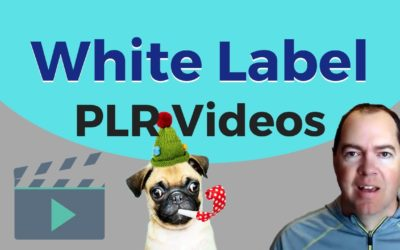 White Label PLR Videos for Affiliate Marketing